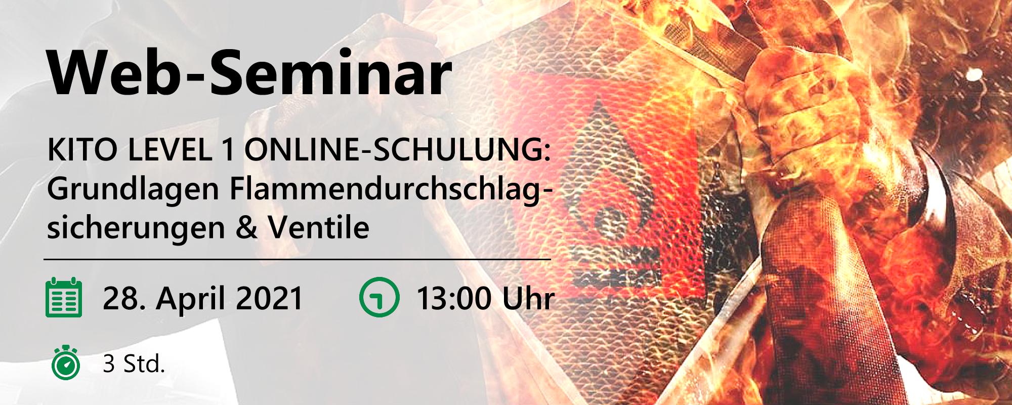 Web-Seminar am 28.04.2021